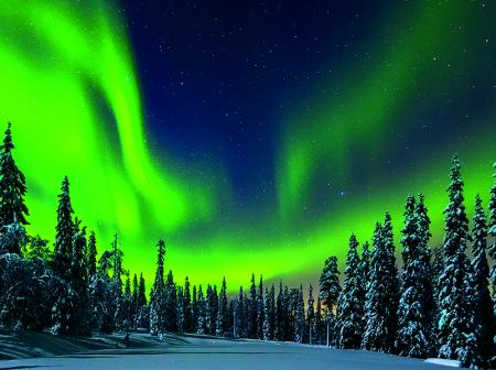 Picture of Lapland Northern Lights in Ivalo