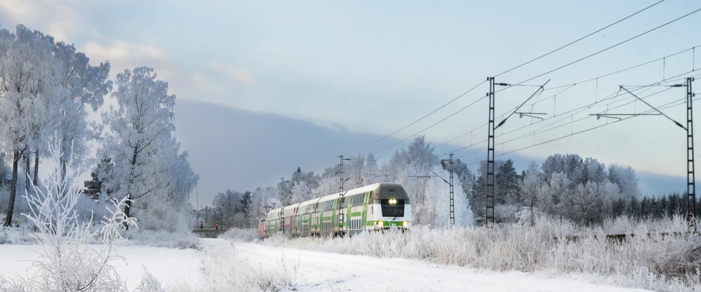 Train in boreal landscape.