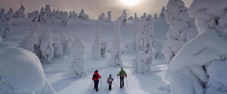 Jyväskylä Ilmainen Pysäköinti 2021