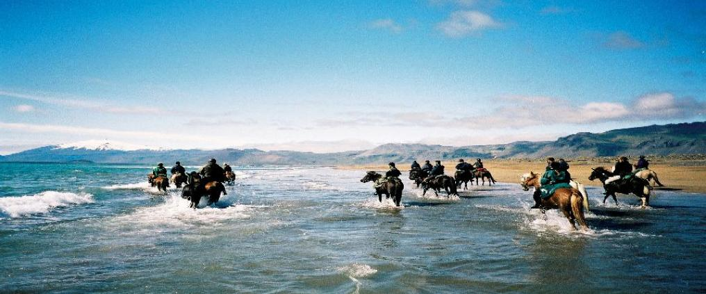 People riding horses at seashore.
